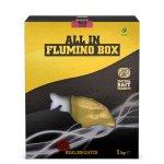 ALL IN FLUMINO BOX - CRANBERRY