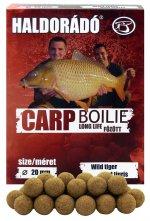 Carp Boilie Long Life - Vad Tigris