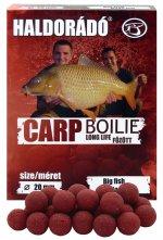 Carp Boilie Long Life - Nagy Ponty